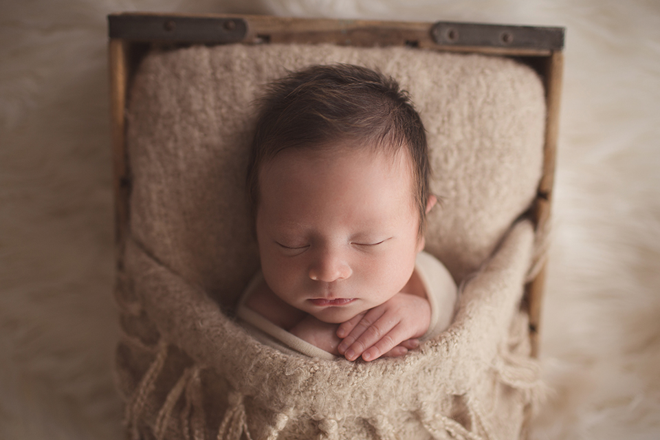 Newborn Photographer San Francisco