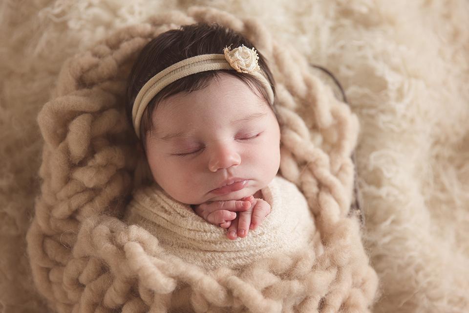 East bay newborn photographer san francisco